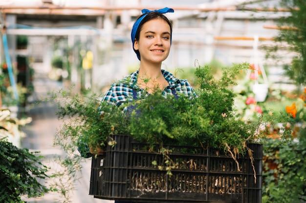 Jardinero de sexo femenino feliz que sostiene el cajón con las plantas frescas