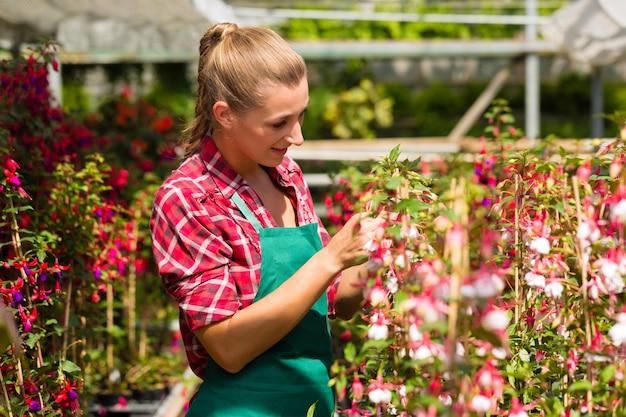 Jardinero de sexo femenino en huerta o vivero