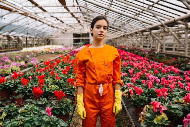 Jardinero de sexo femenino que se coloca cerca de las flores rosadas y rojas del ciclamen