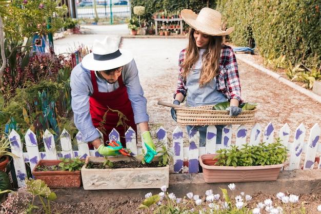 Jardinero de sexo femenino que mira al hombre que poda las plantas con las tijeras de podar en el jardín