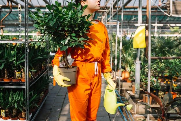 Jardinero de sexo femenino que sostiene la planta en maceta y la regadera