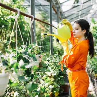 Jardinero de sexo femenino que vierte el agua en la planta en maceta colgante