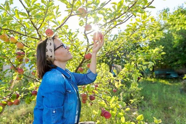 Jardinero de sexo femenino sonriente cerca del manzano con manzanas rojas maduras, sostiene la manzana en la mano, copie el espacio. pasatiempos y ocio, jardín en casa que cultiva alimentos orgánicos naturales saludables, concepto de jardinería