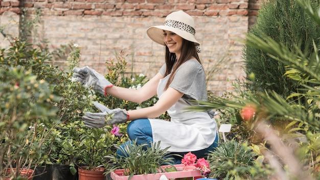 Jardinero de sexo femenino sonriente que examina las plantas en invernadero