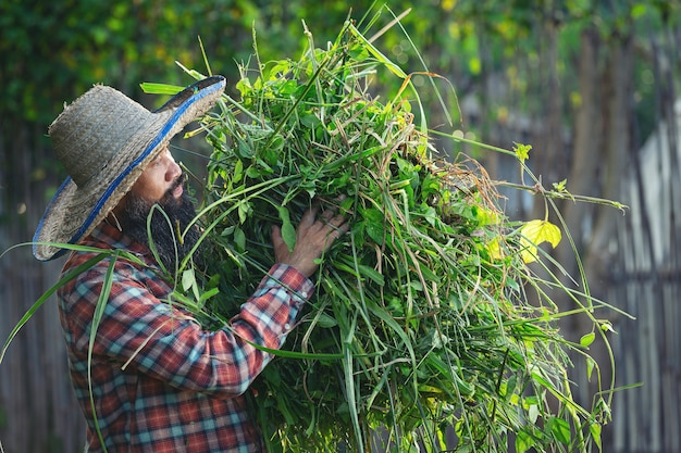 Jardinero sosteniendo un montón de hierba en su brazo