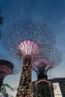 Jardines exteriores junto a la bahía en singapur.