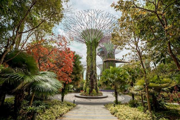 Jardines de singapur junto a la bahía Foto Premium