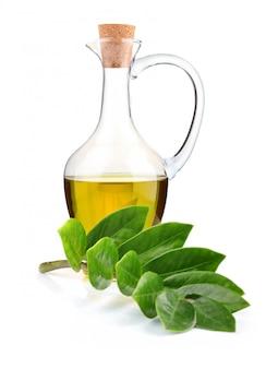 Jarra de aceite de oliva y rama de laurel aislada