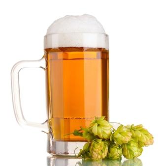 Jarra de cerveza y lúpulo verde aislado en blanco