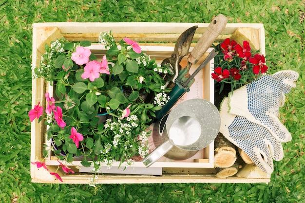 Jarra metálica cerca de flores y equipo de jardinería en caja de madera.