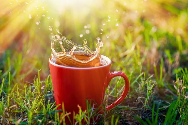 Jarra roja de té sobre hierba en el parque