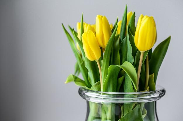 Jarrón transparente con tulipanes amarillos sobre un fondo gris. vista lateral. copia espacio