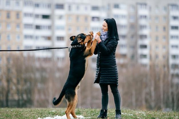 Joven activa chica de pelo negro en abajo chaqueta jugando con su hermoso perro al aire libre. alegre mujer feliz divertirse y entrenar cachorro con palo. linda mujer bailando con mascota de raza pura. dueño con perro