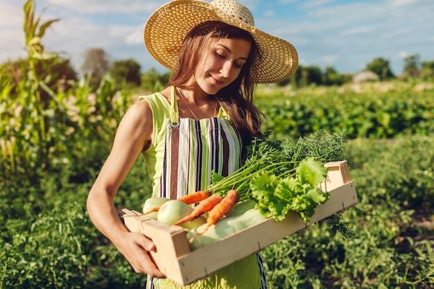 Joven agricultor con caja de madera llena de verduras frescas, mujer reunió zanahorias de verano, cultivo de lechuga,