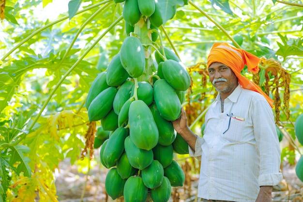 Joven agricultor indio en el campo de la papaya