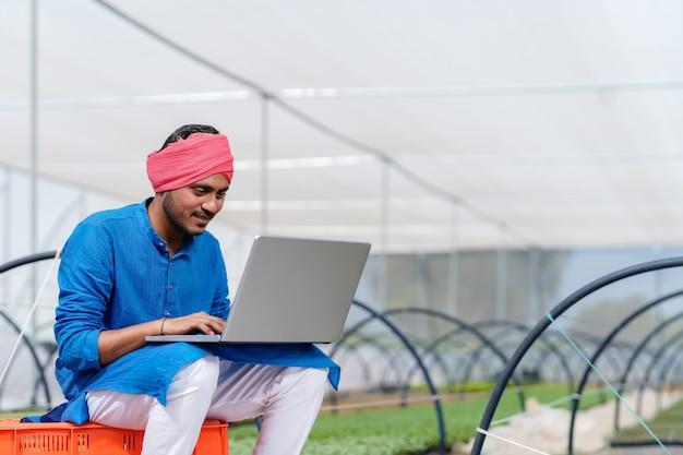 Joven agricultor indio usando laptop en invernadero o casa de polietileno