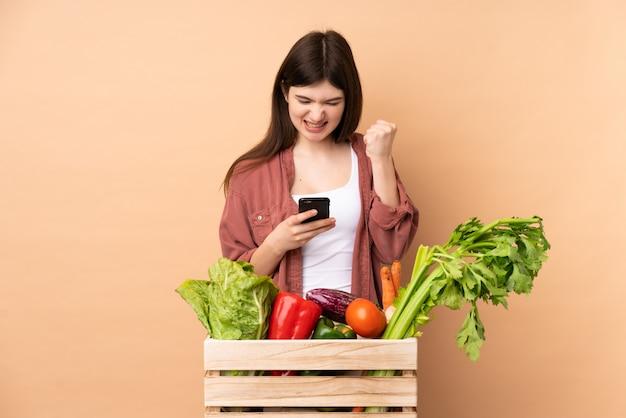 Joven agricultor con verduras recién cortadas en una caja con teléfono en posición de victoria
