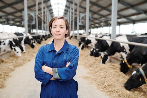 Joven agricultora confiada o trabajadora de la granja cruzando los brazos sobre el pecho mientras está de pie en el largo pasillo entre las vacas