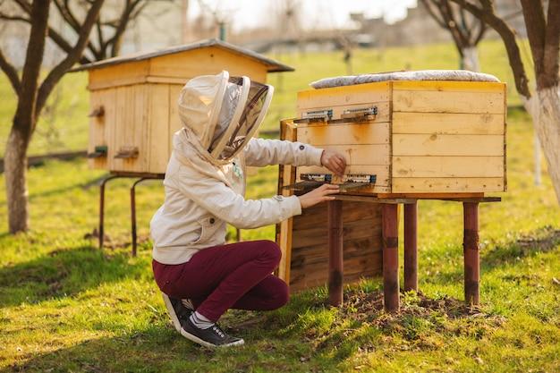 Una joven apicultora está trabajando con abejas e inspeccionando la colmena de abejas después del invierno