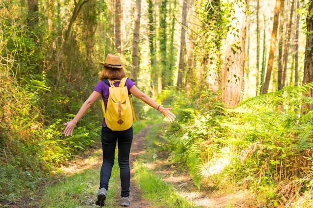 Un joven aventurero con un sombrero con una mochila amarilla en el bosque de pinos.