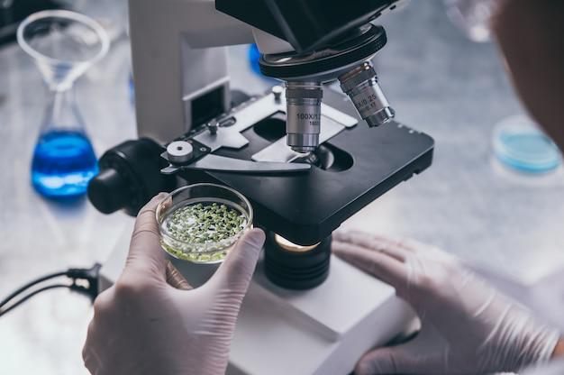 Joven científico mirando a través de un microscopio en un laboratorio. joven científico investigando.