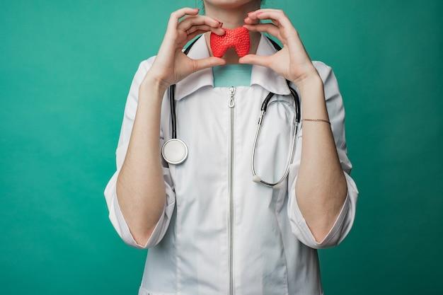 Una joven doctora sostiene un modelo de tiroides de una persona en sus manos. el concepto de protección y tratamiento