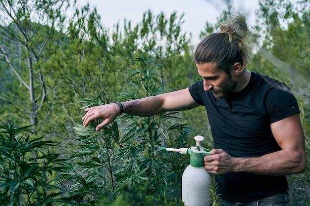 Un joven jardinero cuidando su verde jardín fertilizándolo