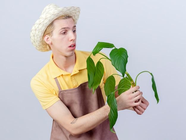 Joven jardinero hombre vestido con mono y sombrero sosteniendo la planta mirando intrigado