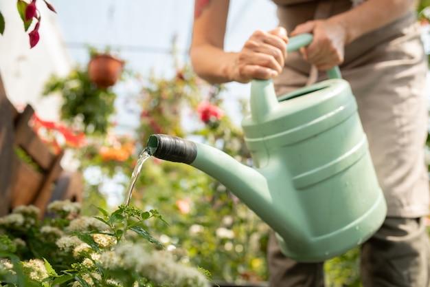 Joven jardinero inclinado sobre el macizo de flores mientras riega las plantas en invernadero o jardín