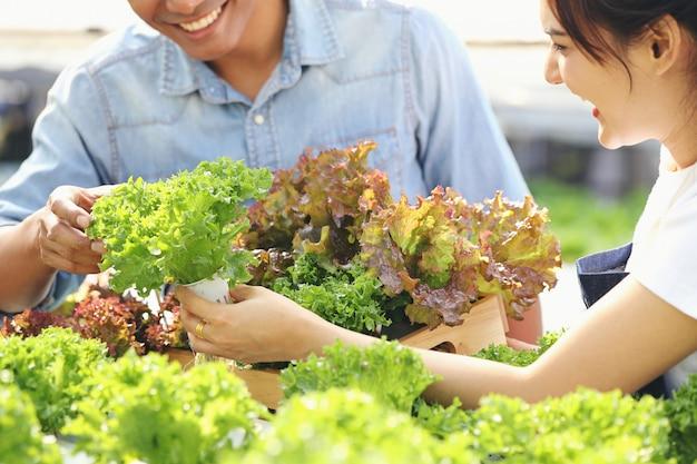 Una joven mujer está recogiendo verduras de una granja hidropónica, con un joven ayudando. los dos son felices.