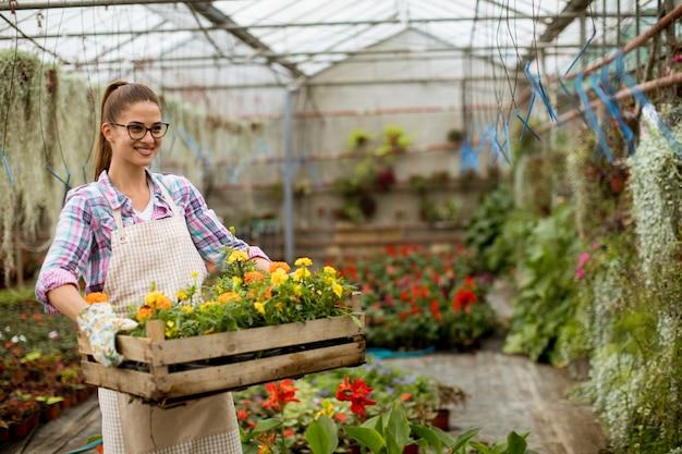 Joven mujer sosteniendo una caja de madera llena de flores de primavera en el invernadero