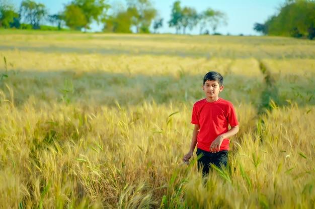 Joven niño indio jugando en el campo de trigo, india rural