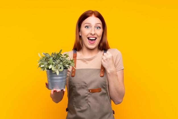 Joven pelirroja jardinero mujer sosteniendo una planta sobre pared amarilla aislada celebrando una victoria
