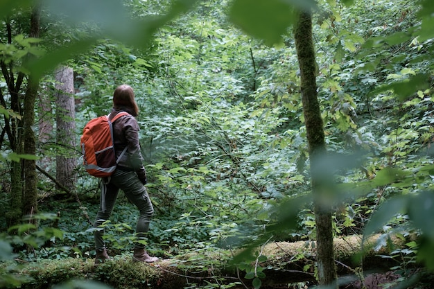 Joven pelirroja de pelo largo mujer viaja en verano bosque nublado