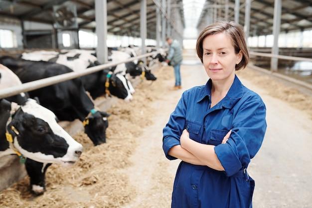 Joven trabajadora de la granja lechera mirándote mientras está de pie delante de la cámara en el fondo de la larga fila de vacas lecheras