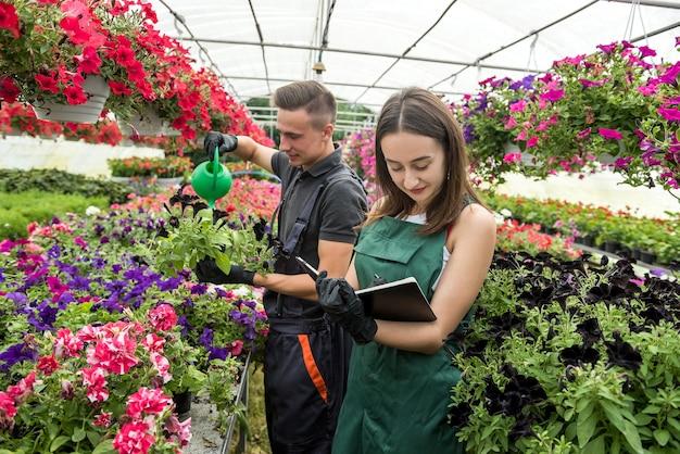 Jóvenes floristas masculinos y femeninos con portapapeles comunicándose mientras analizan el stock de plantas en un invernadero