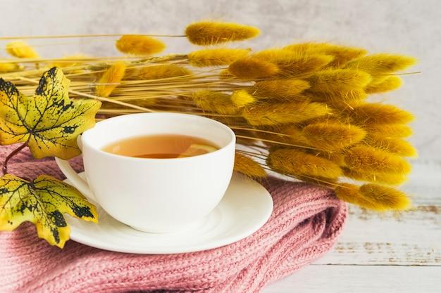 Juego de té con bebidas cerca de ramas de otoño