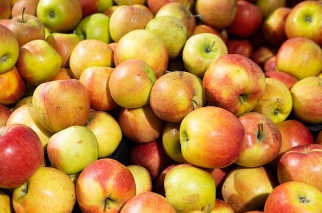Jugosas manzanas rojo-verdes en el mostrador de la tienda de comestibles