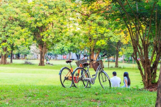 Junte la bicicleta en el césped con la gente asiática de los pares que descansa sobre el fondo borroso de la hierba.