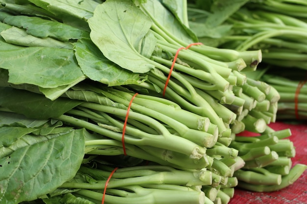 Kale en el mercado