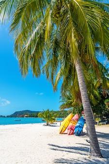 Kayaks multicolores en una playa tropical de arena. alquiler de kayak. entretenimiento turistico