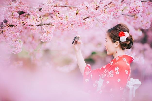 Kimono que lleva de la mujer asiática que usa smartphone con las flores de cerezo, sakura en japón.