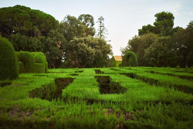 Laberinto verde en un parque