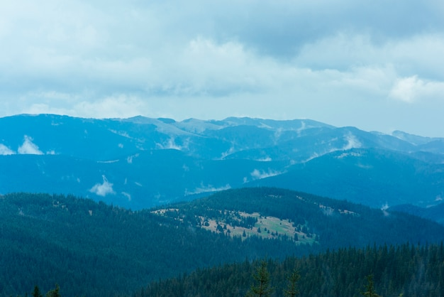 Las laderas de las montañas están cubiertas de abundante bosque lluvioso.