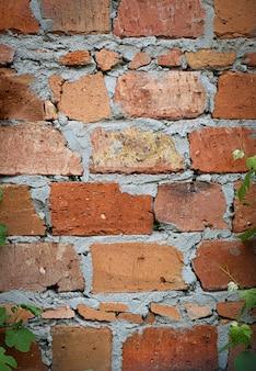 Ladrillo rojo envejecido con textura de muro de hormigón