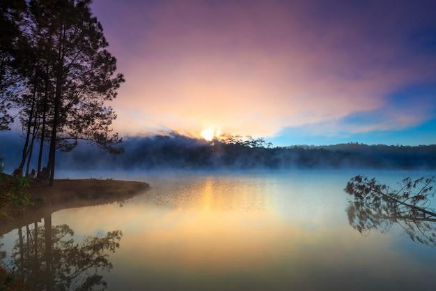 Lago y bosque de pinos en el tiempo de la mañana