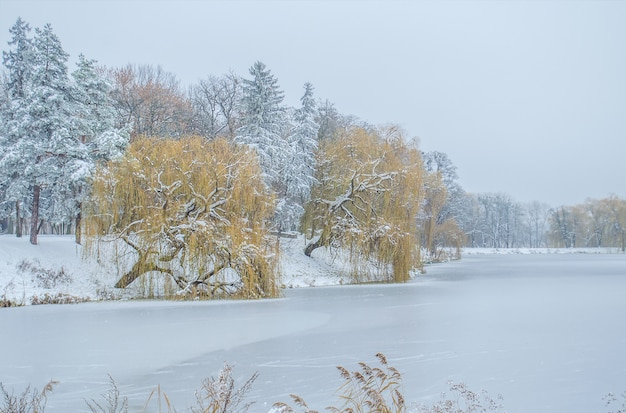 Lago de invierno congelado. paisaje invernal con lago cubierto de hielo.