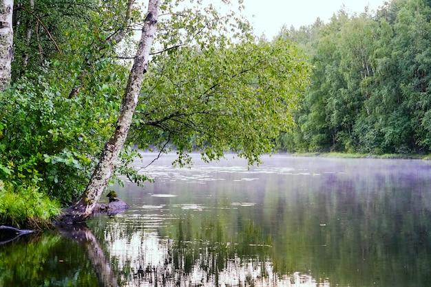 Lago tranquilo con niebla sobre el agua después de la lluvia.