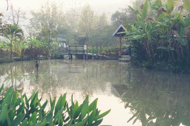 Lago tropical, escena de la naturaleza