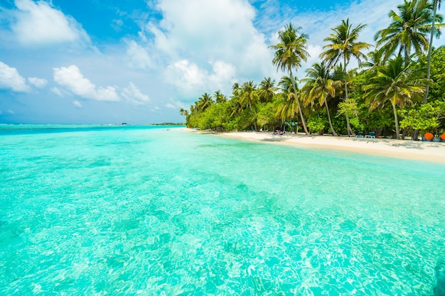 Laguna océano de arena blanca del verano